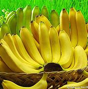 香蕉亚虎pt网站方案
